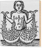 Mermaid, 1520 Wood Print
