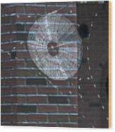 0112- Web Wood Print