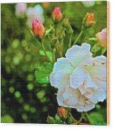 01142017080 Wood Print