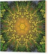 012 Wood Print