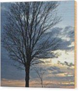 015 April Sunsets Wood Print