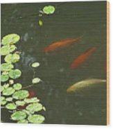 0158- Koi Wood Print