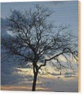 016 April Sunsets Wood Print