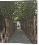 0171- Bamboo Walkway Wood Print