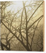 02 Foggy Sunday Sunrise Wood Print