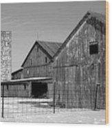 020309-74 Wood Print