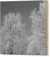 020810-72 Wood Print