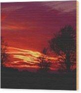 022107-37 Wood Print