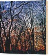 0223 Wood Print