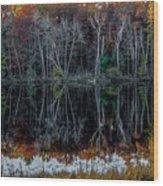 02l Reflections At  Gowen Michigan Wood Print