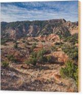 030715 Palo Duro Canyon 025 Wood Print