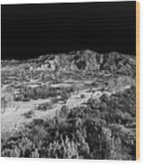 030715 Palo Duro Canyon 039 Wood Print