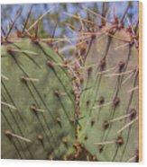 030715 Palo Duro Canyon 070 Wood Print