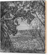 030715 Palo Duro Canyon 105 6 7 Wood Print