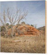 030715 Palo Duro Canyon 160 Wood Print