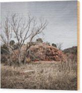 030715 Palo Duro Canyon 161 Wood Print