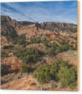 030715 Palo Duro Canyon 018 Wood Print