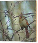 032309-23 Wood Print