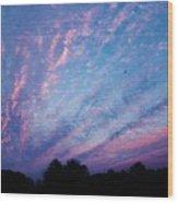 03262013021 Wood Print