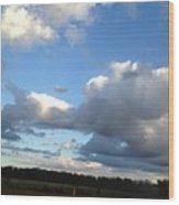 03262013024 Wood Print