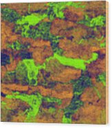 0374 Abstract Thought Wood Print