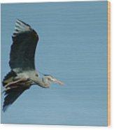 040210-46 Wood Print