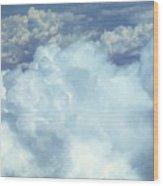 04112012009 Wood Print