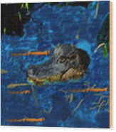 04142015 Gator Hole Wood Print