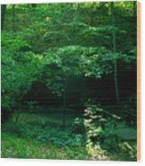 042407-45 Wood Print