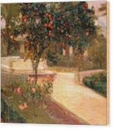 Garden Alcazar Seville Wood Print