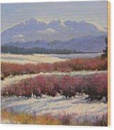 051209-1814  Pikes Peak - North View Wood Print