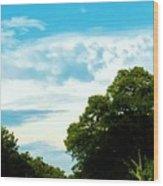 05222012004 Wood Print