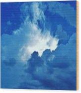 05222012064 Wood Print