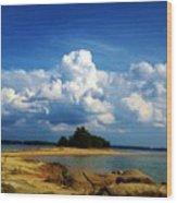 05222012103 Wood Print