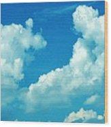 05222012107 Wood Print