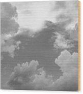 05222012112 Wood Print
