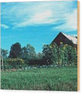 060507-30 Wood Print