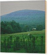 061207-17 Wood Print