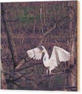 070406-22 Wood Print