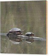 070406-68 Wood Print