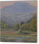 070815-1814   Evening Over Long Scraggy Mt.  Wood Print