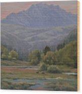 070815-1814   Evening Over Long Scraggy Mt.  Wood Print