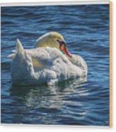 071118-50-c Wood Print