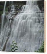 071809-314 Wood Print