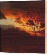 072806-3 Wood Print