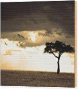 08006 Wood Print