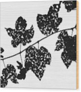080506-22 Wood Print