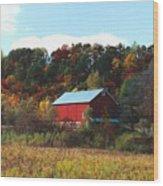 080806-7 Wood Print
