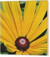 081117015 Wood Print