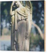 08182002001 Wood Print